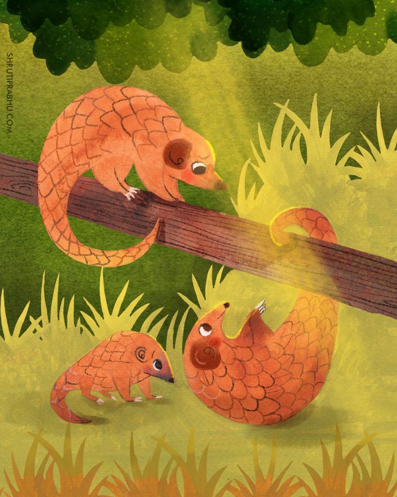 Flora and fauna - Pangolins